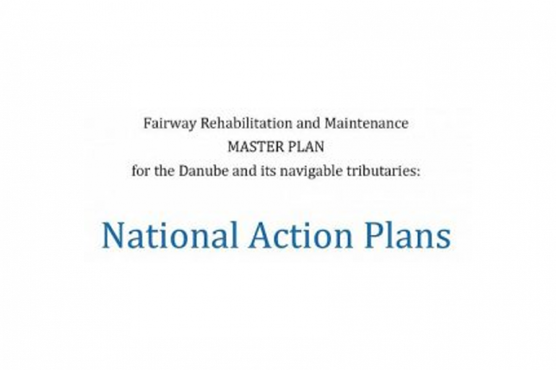 Update of the National Action Plans